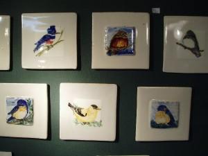 Marcia birds
